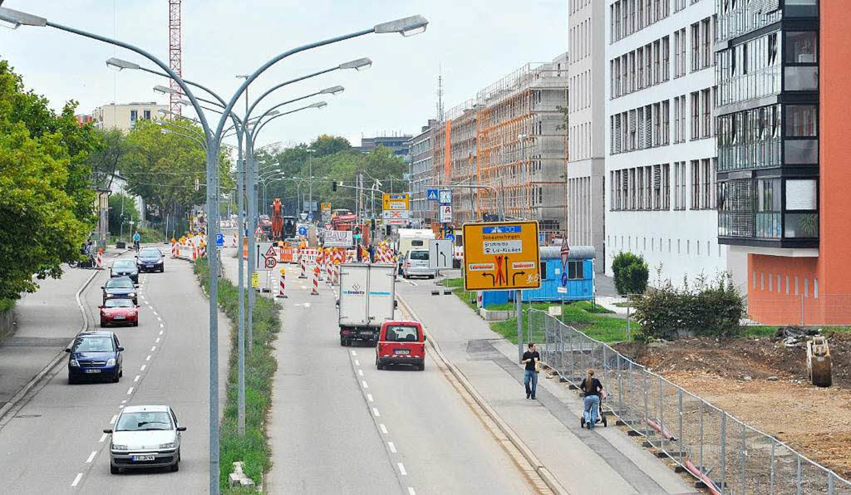 Baustelle an allen Ecken und Enden der...Elefantenweg ist auch geräumt (rechts)    Foto: Bamberger