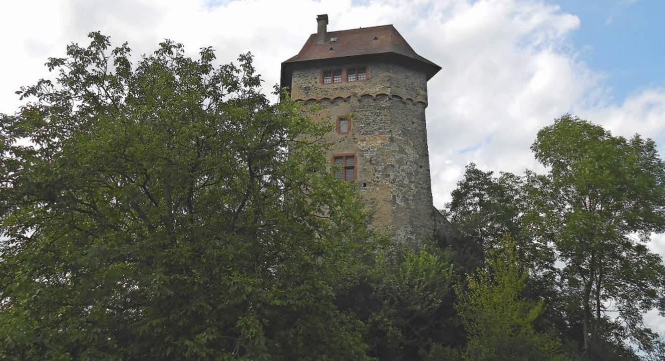 Die Burg Sponeck liegt  am Waldrand. A...fenen Denkmals ist sie zu besichtigen.  | Foto: Simon Tenz