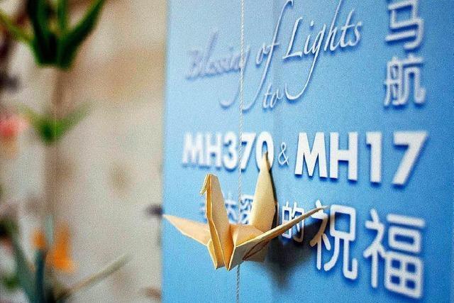 Ermittler: Flug MH17 von zahlreichen Objekten durchsiebt