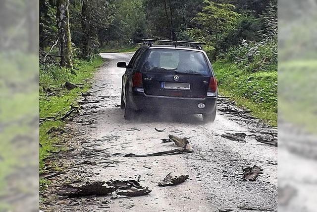 Ärger mit Holzabfällen