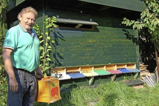 Von den fleißigen Bienen profitieren