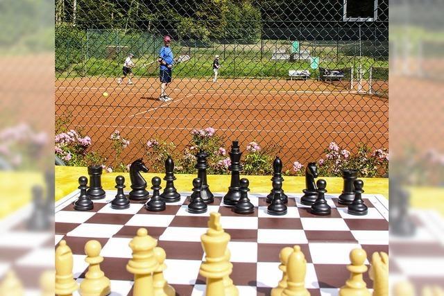 Wettbewerb für Kopf und Beine