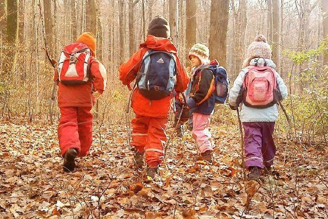 Rust liebäugelt mit einem Waldkindergarten