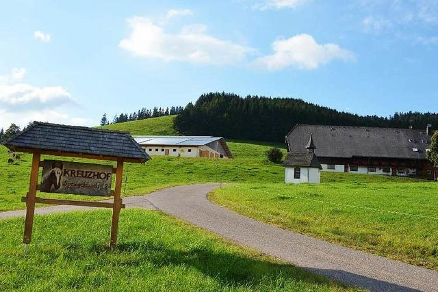 Alte Schwarzwaldhöfe: Moderne Landwirtschaft ist kaum möglich