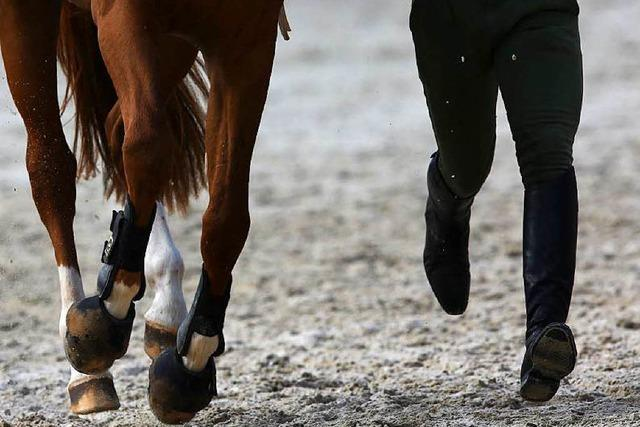 Polo und drei klassische Disziplinen in Donaueschingen
