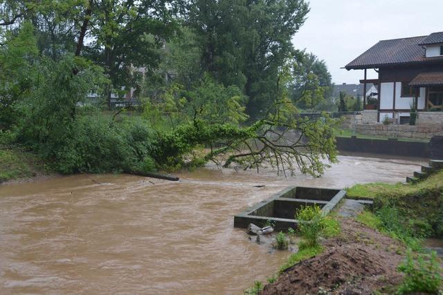 Stadt will Festung gegen die Fluten errichten