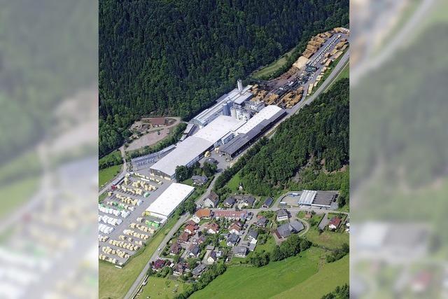Mehr Power für das Kraftwerk: Gemeinderat stimmt Dold-Vorhaben zu