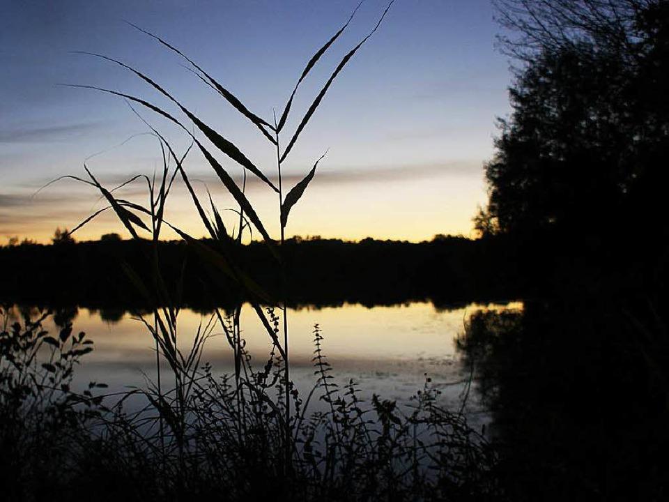 Der Nimburger Baggersee ist ein Idyll....ber nicht alle Besucher um die Regeln.  | Foto: hans-jürgen truöl
