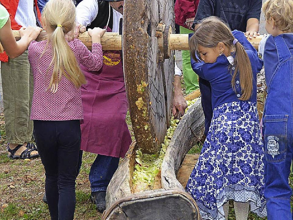 Die Äpfel werden fürs Mosten vorbereitet  | Foto: Edgar Steinfelder