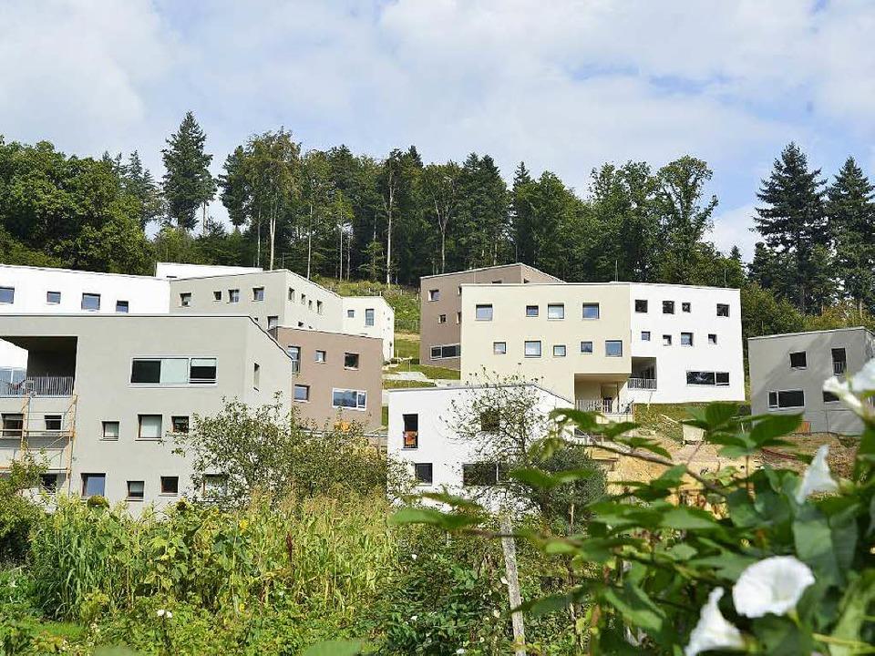 in freiburg wird das united world college er ffnet s dwest badische zeitung. Black Bedroom Furniture Sets. Home Design Ideas