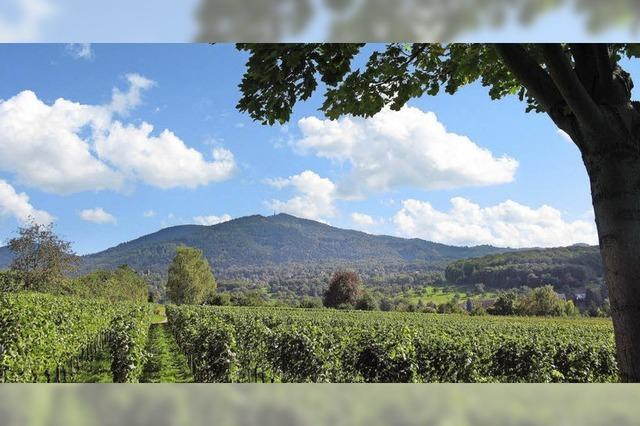 Wanderwege rund um Müllheim bieten Wein- und Kulturgeschichte