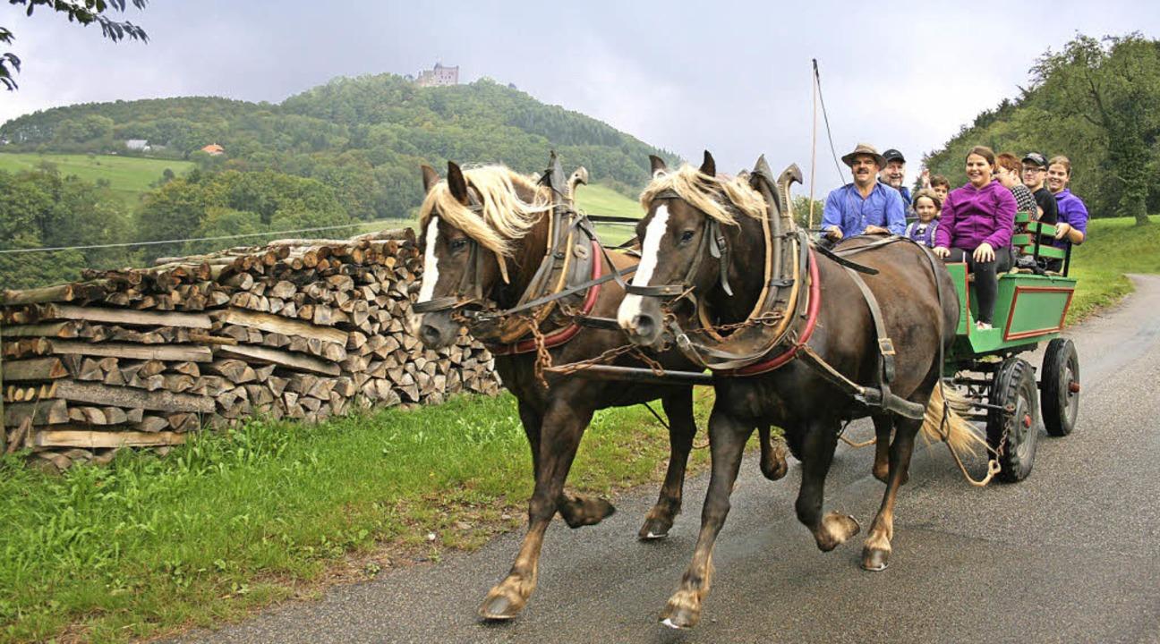 Mächtig auf Trab: Feika und Fiona ziehen die Kutsche mit den Gästen.  | Foto: Theo Weber