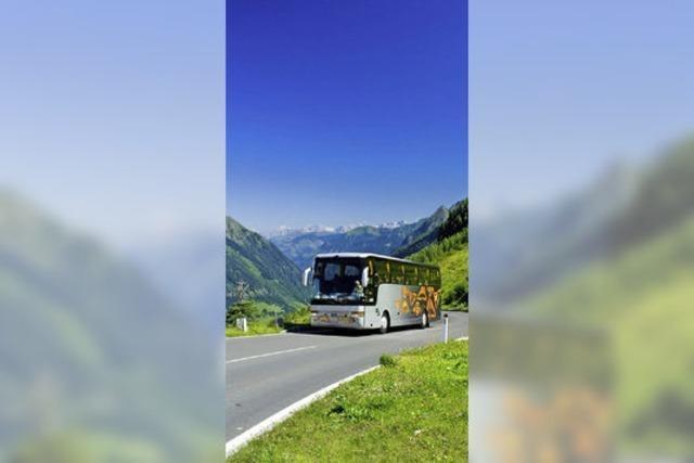 Statistik beleuchtet Unterschiede von Busreisenden