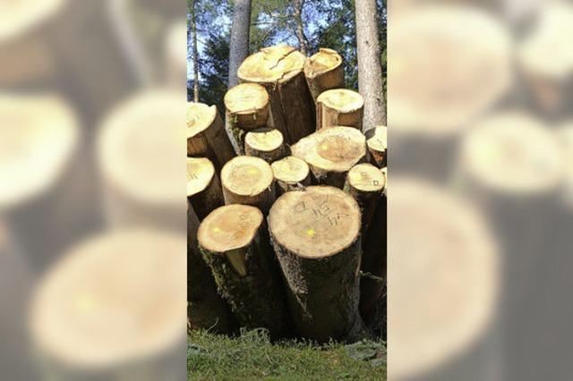 Forst bleibt ersprießlich