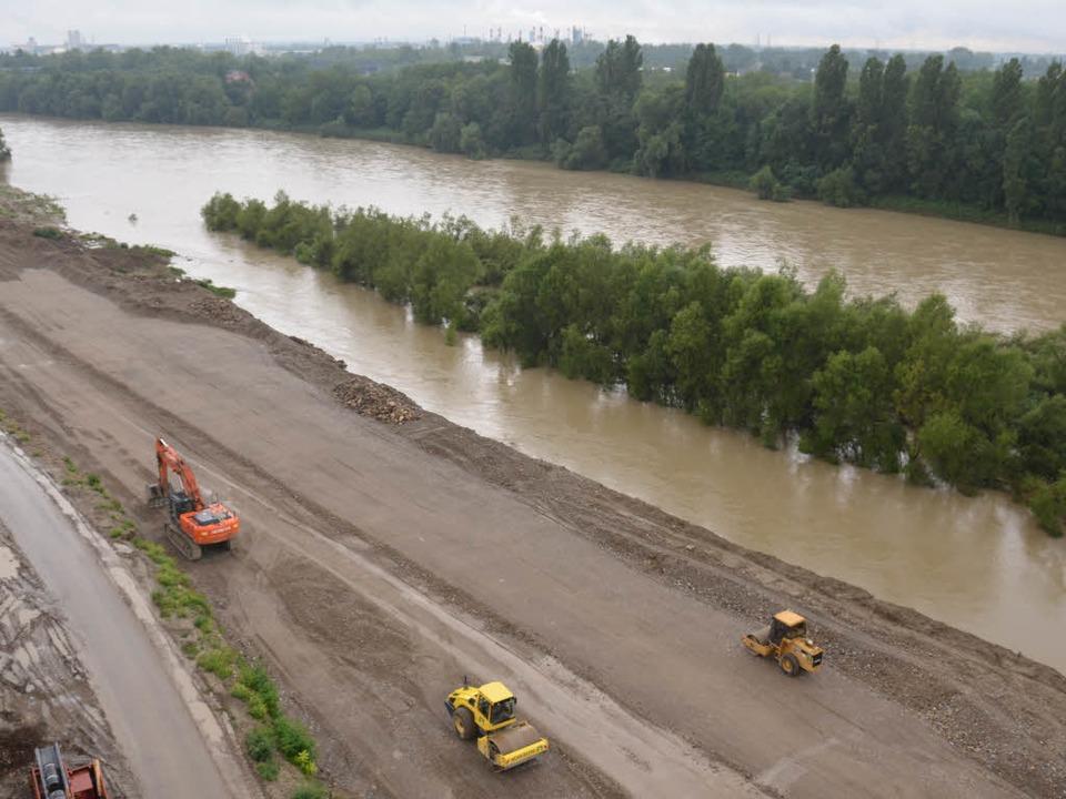 Der Weg zum Rhein ist frei,  jetzt wer...ärten auf dem Uferstreifen modelliert.  | Foto: Julia Jacob