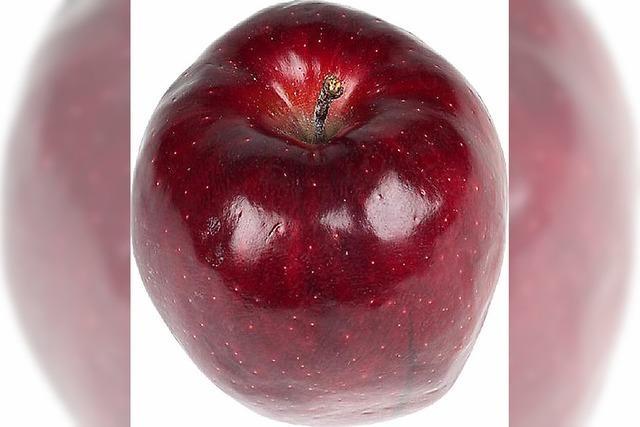 Einladung zur Apfelernte
