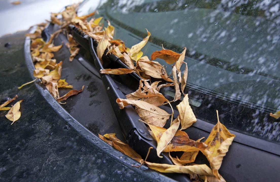 Herbstliches Risiko: Wenn sich zwische...Regenabläufe. Das ist problematisch.      Foto: Andrea Warnecke/dpa