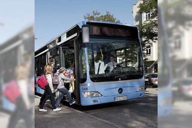 Freie Bahn nur für Busse