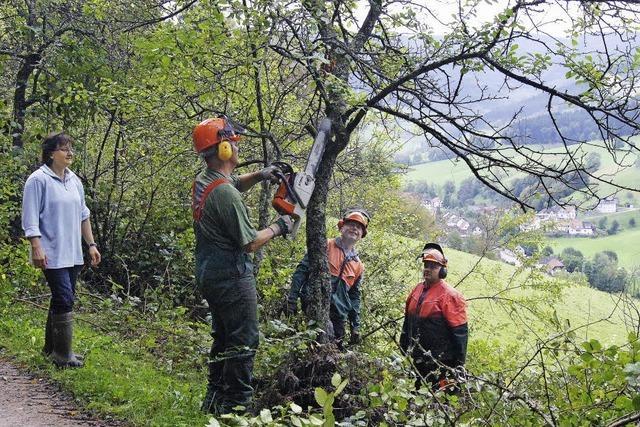 Zehnter Landschaftspflegetag in Yach