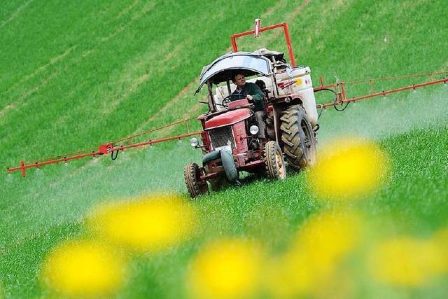 Unkraut ist zunehmend resistent gegen Pflanzenschutzmittel