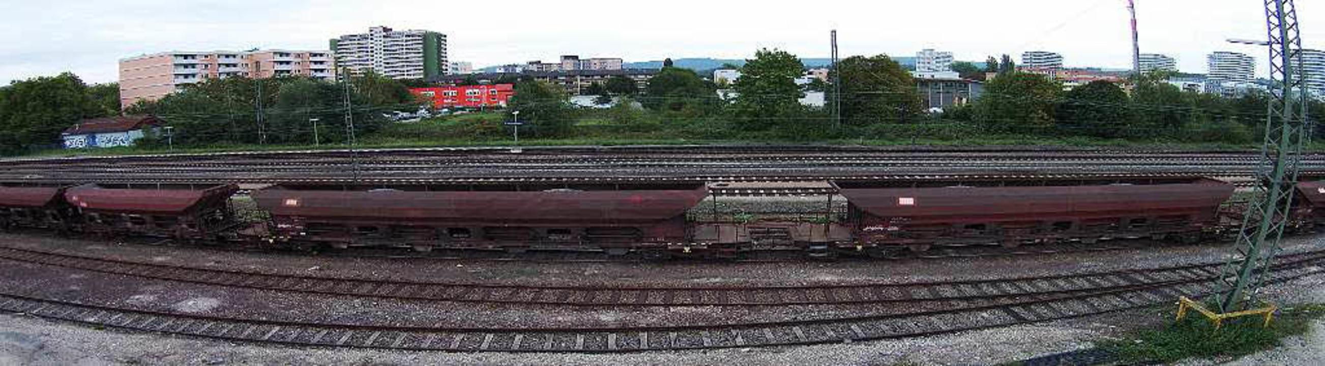 Bahn an die  Autobahn, fordert auch Lahr.  | Foto: Christoph Breithaupt