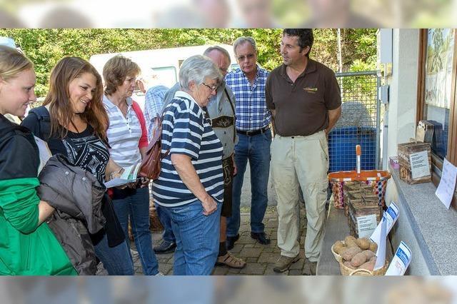 Experiment Kartoffelmarkt geglückt