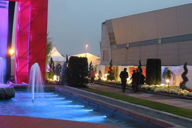 Herbstmesse in Mulhouse: Bonsaikunst und Baustoffkunde