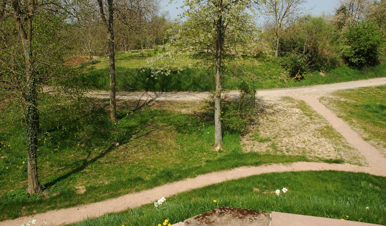 Burgplatz, Siedlung oder Gräberfeld? D...noch jede Menge archäologische Rätsel.  | Foto: aniela jeworutzki (2), Barbara Schmidt