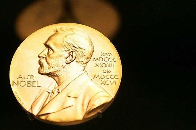 Medizin-Nobelpreis für Entdeckung der Zellpositionierung im Gehirn