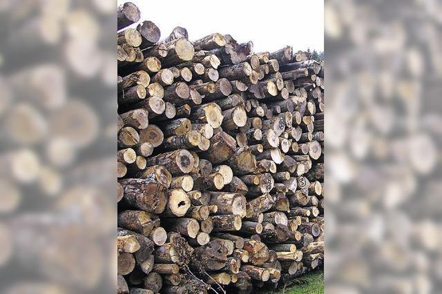 Bernauer Forstbetrieb liegt im Plan