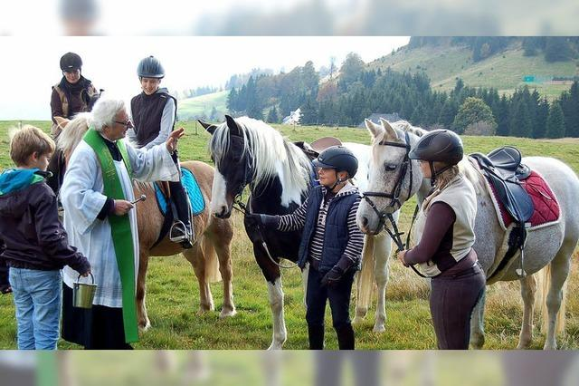 Auch Tiere genießen Gottes Segen
