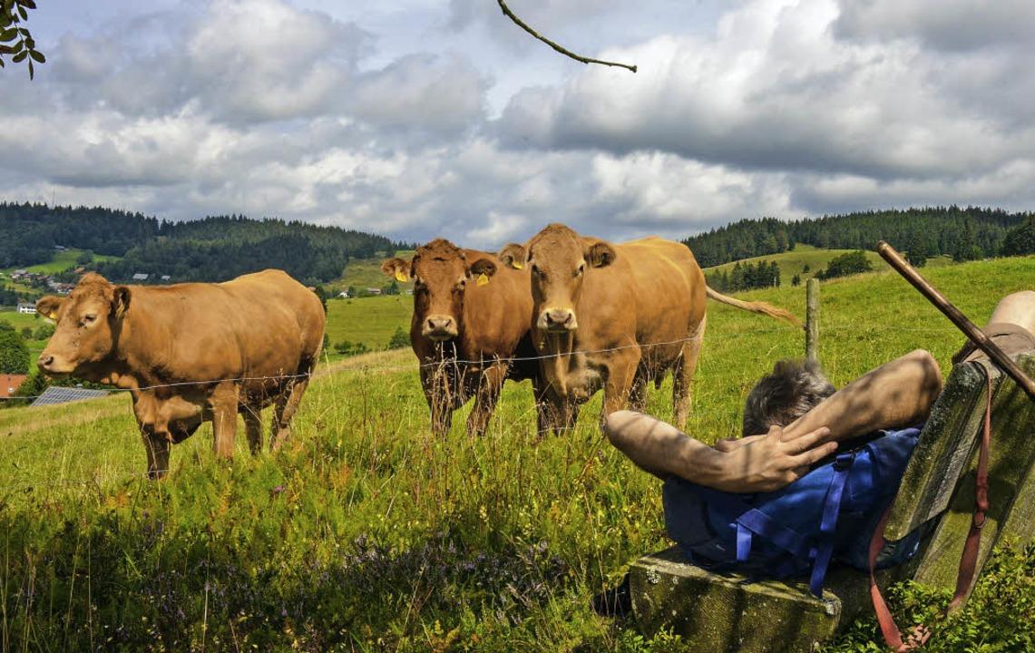 Pause: kritisch beobachtet von ein paa...ge kennzeichnen die Wanderung (links).  | Foto: Gabriele Hennicke