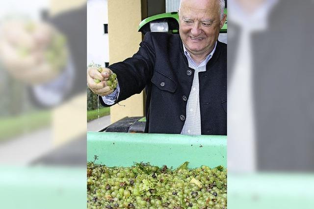 Rüdlin freut sich auf fruchtige Weine