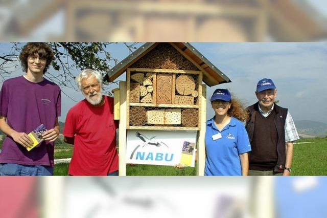 Attraktiver Wohnort für Wildbienen