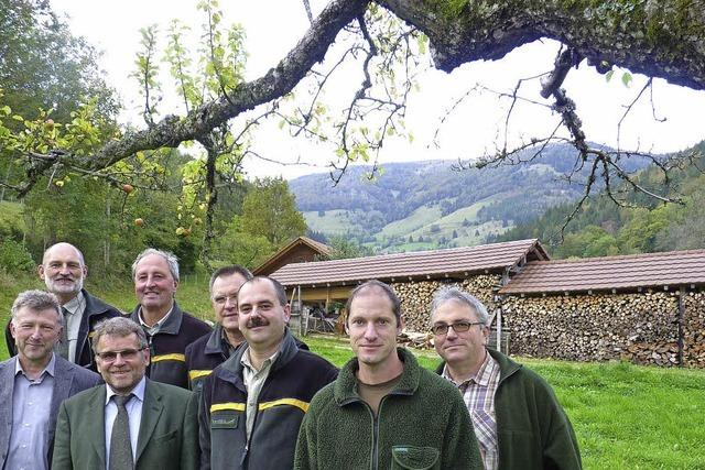 Gute Aussichten für Gemeindewald