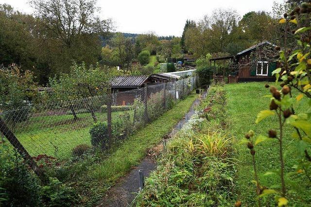 Frieden im Streit zwischen Stadt Lahr und Kleingärtnern