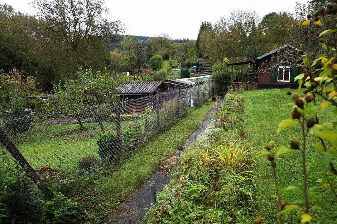 Das Kleingartengebiet Errnet-Krummhalde  | Foto: Christoph Breithaupt, Christoph Breithaupt