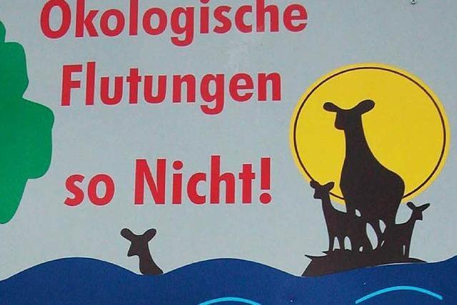 Bundesverwaltungsgericht weist Beschwerde aus Schwanau ab