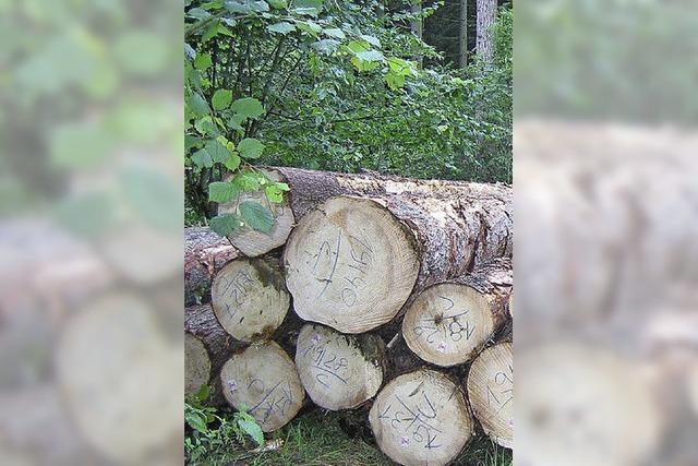 Fröhnder Wald bringt mehr Gewinn