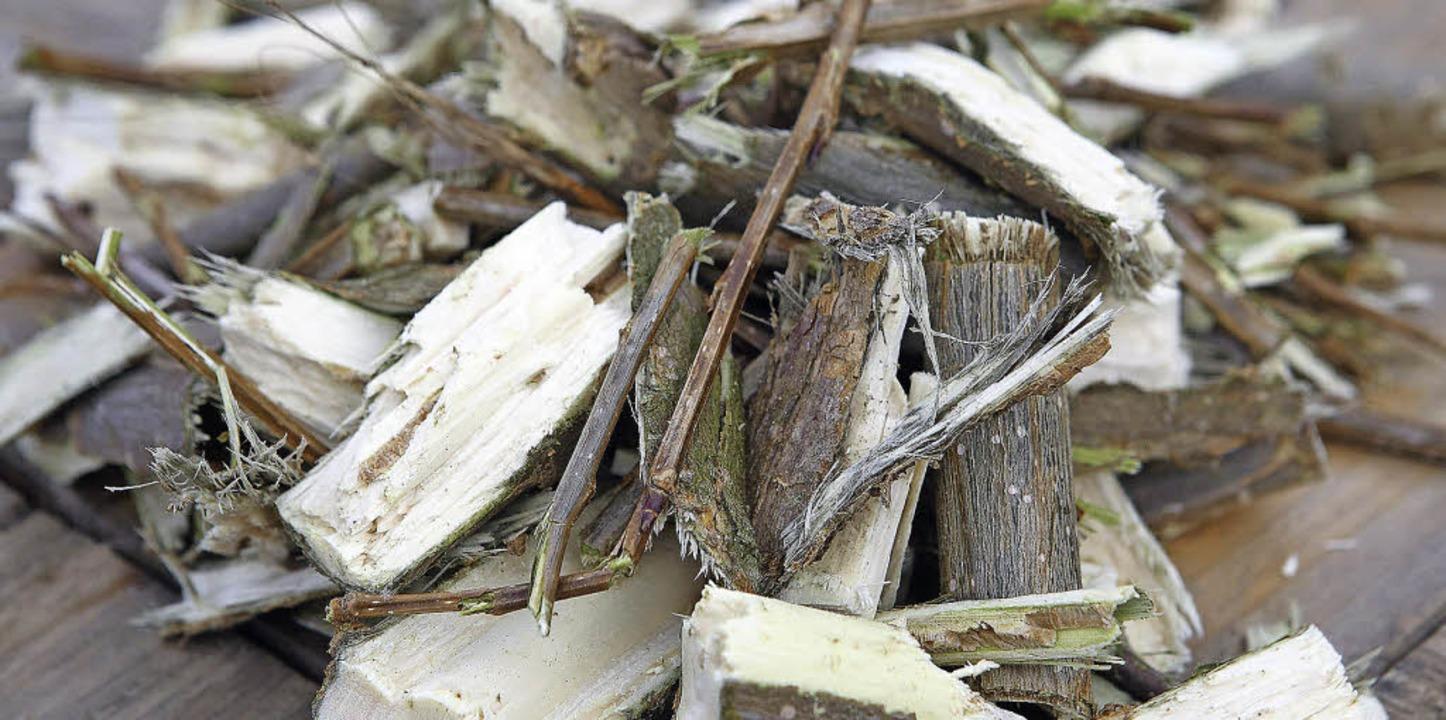 Mit gespaltenem Holz, das nicht als  B...zen können und für Heißwasser sorgen.   | Foto: energy crops GmbH/vattenfall