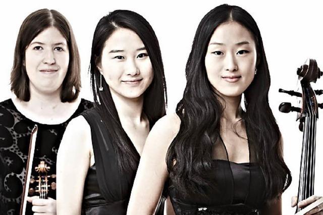 Klavier, Violine und Violoncello