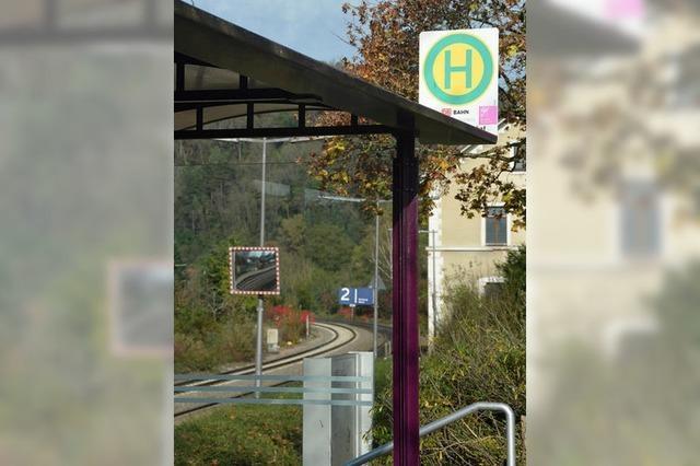Ziel sind mehr Busse zum Zug