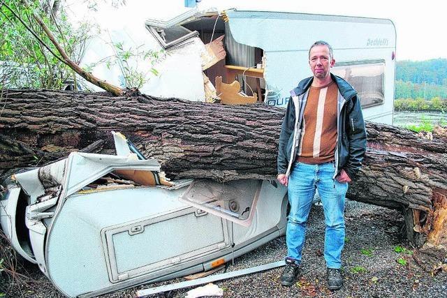 Baum stürzt auf Wohnwagen und erschlägt fast Bewohner