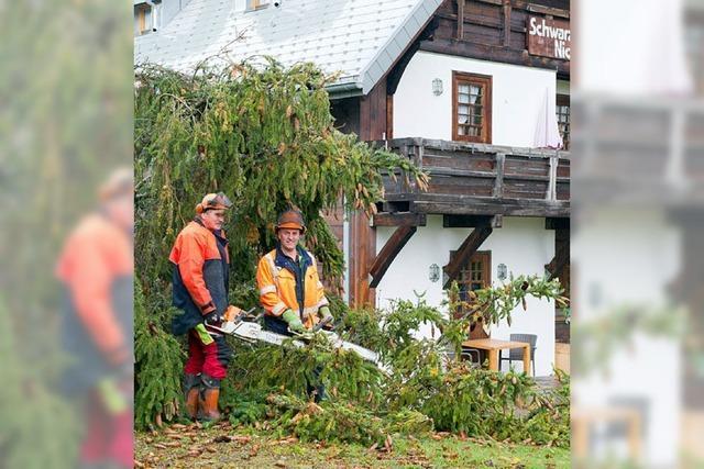 Sturm hält Feuerwehr und Bauhof auf Trab