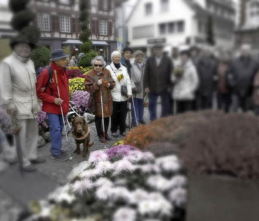 Blinde haben Freude an der Chrysanthem...h nur eingeschränkt wahrnehmen können.    Foto: CHRISTOPH BREITHAUPT