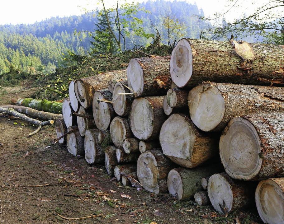 Nahezu abgeschlossen sind die Holzerntearbeiten entlang der L170.  | Foto: Wilfried Dieckmann