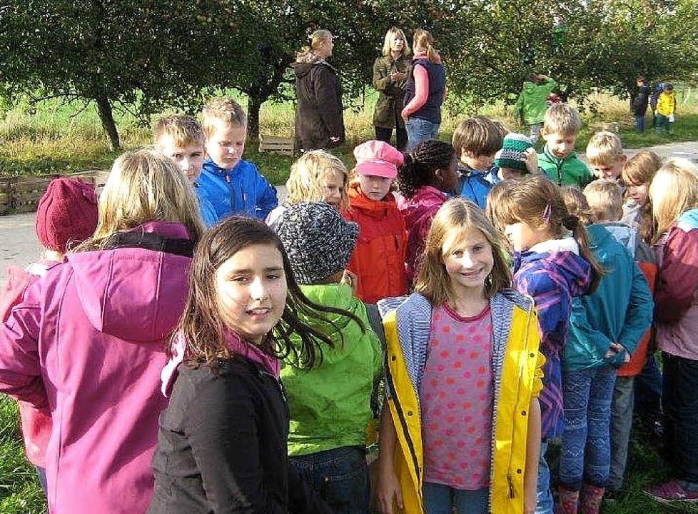 Eimeldinger Schüler hatten viel Spaß bei der Apfelernte.   | Foto: manfred Merstetter