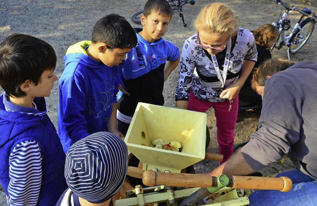 Günther Schmidt macht mit Kindern an der Trotte aus den Äpfeln Saft.    Foto: Martina proprenter