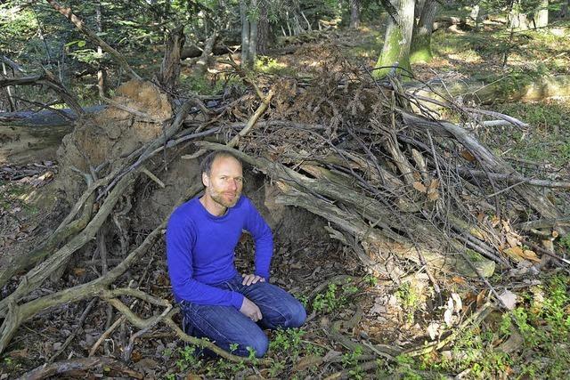 Neuer Anlauf für Waldkindergarten