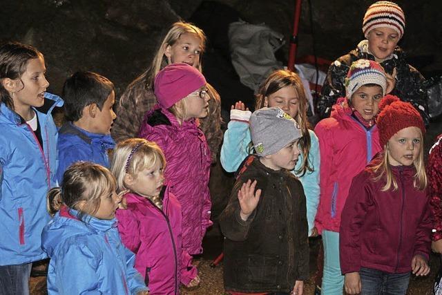 Mehr Besucher bei den Erdmännchen